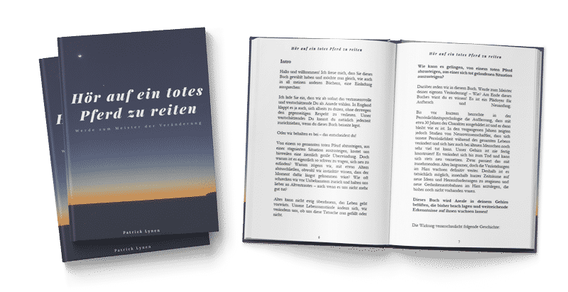 Patrick Lynen Meister der Veränderung Book-mokup